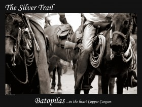The Silver Trail Continues